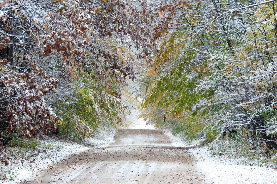 """Seasons Collide"""