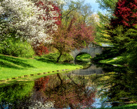 Dow Gardens-Footbridge-spring blossoms