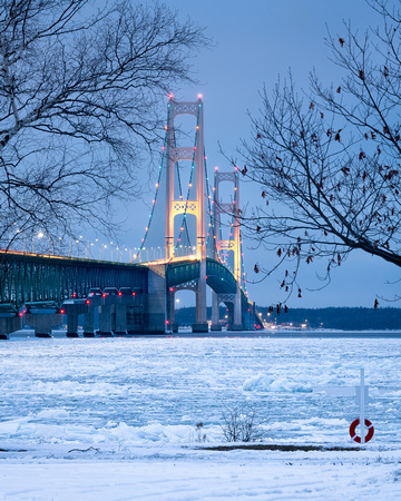 Mackinac Bridge framed in winter maple