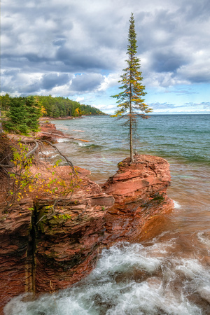"""All on its Own"". A cool tree perched on the rocky shoreline of Lake Superior"