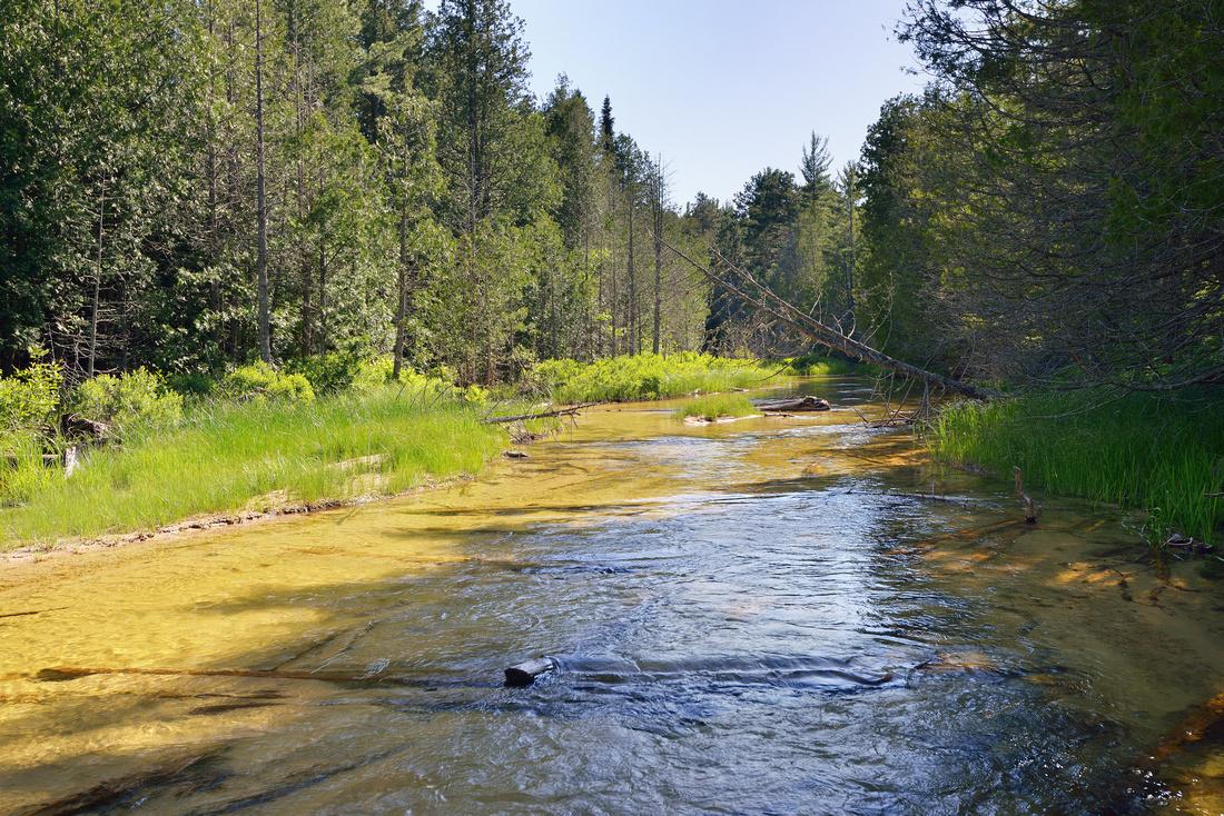 Beaver Creek, Beaver Basin Wilderness Pictured Rocks National Lakeshore
